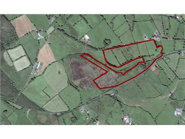 Photo of 34 Acres Approx, Willisbrook, Granard, Longford