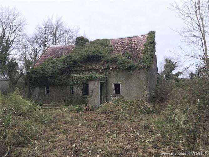 Photo of Clooneenbaun, Roscommon, Roscommon