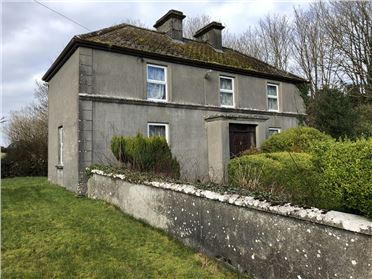 Photo of Corker, Gort, Galway