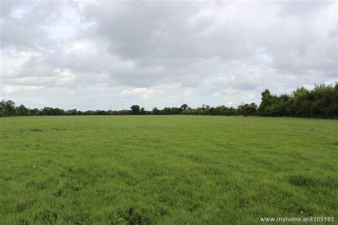 Whitechurch, Straffan, Co. Kildare - approx. 22 acres.