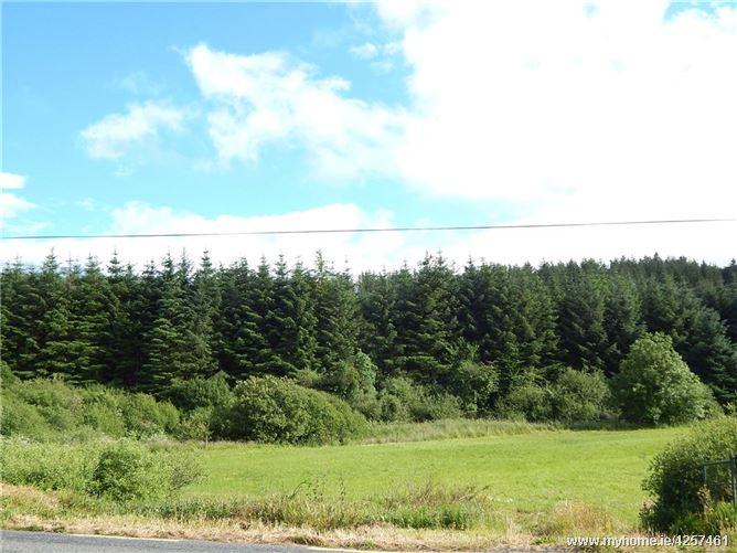 43.9 Hectares (108 Acres), Muckenagh, Freemount, Charleville Co Cork