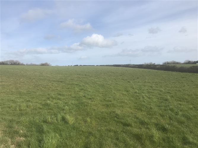 Main image for Scarnagh Cross, Ballylarkin, Gorey, Wexford