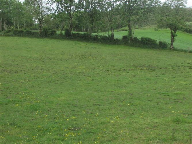 Main image for Cargaghmore & Ardragh, Corduff, Carrickmacross, Co. Monaghan