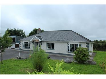 Photo of Ballymacurley South, Ballinaheglish, Roscommon
