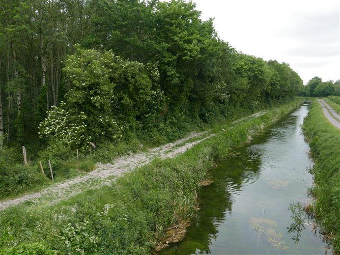 Main image for Newpark, Kilmeague (Forestry), Naas, Kildare