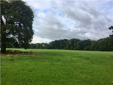 Main image of 180 Acres & 4 Cottages (In Lots), Moyne & Coolnabehy, Durrow, Laois