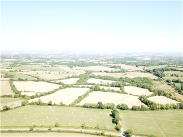 Photo of 46 Acres, Ballickmoyler, Laois