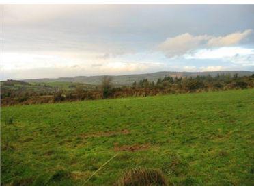 Main image of Curraghteskin, Ballymacarbry, Waterford
