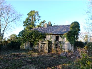 Photo of Renovation Property at Castlebanny, Mullinavat, Kilkenny