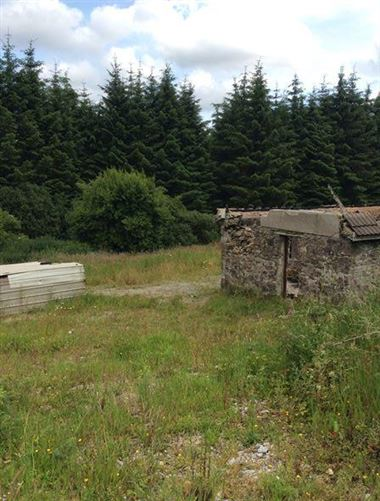 Main image for Derelict cottage at Cloghvoolia, Killavullen, Mallow, Cork