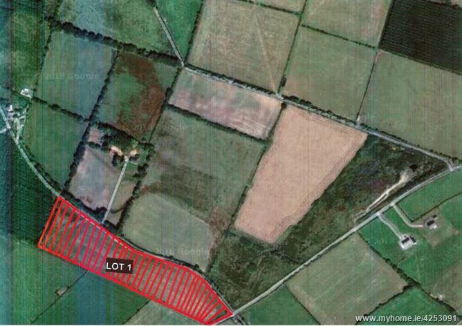 c. 10.2 Acres at Craanlusky, Bilboa, Carlow Town, Carlow
