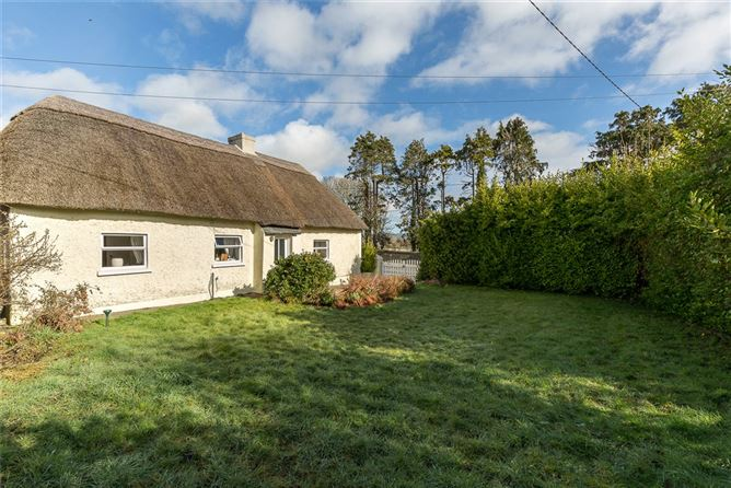 Main image for The Thatched Cottage,Main Street,Mooncoin,Co. Kilkenny,X91 KF62