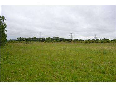 Main image of Stacumney, Celbridge, Kildare - approx. 6.2 acres