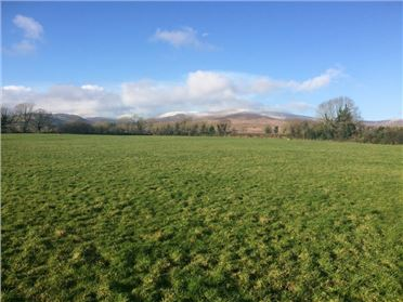Property image of Moonaloughra, Burncourt, Cahir, Tipperary