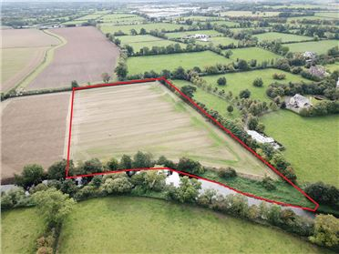 Main image of 7.44 Acre Site, Newhall, Naas, Kildare