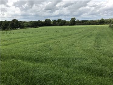 Main image of C.8 Acres Kyle, Kilmoganny, Kilkenny