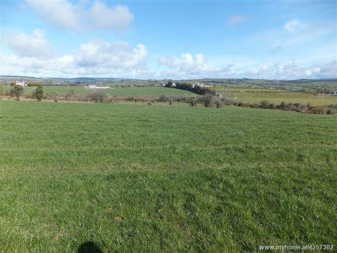 c.15.48 acres, Ballygirriha, Donoughmore, Cork