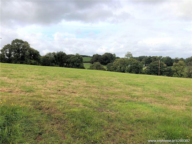 Lot 1, Lismulbreeda, Darragh, Ennis, Co. Clare