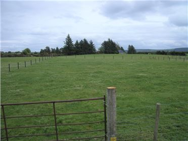 Photo of Ballysallagh, Hacketstown, Carlow