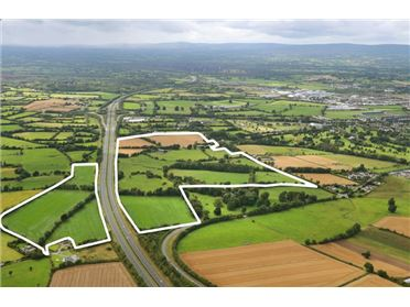 Main image of 100 Acres at Meelick, Portlaoise, Laois