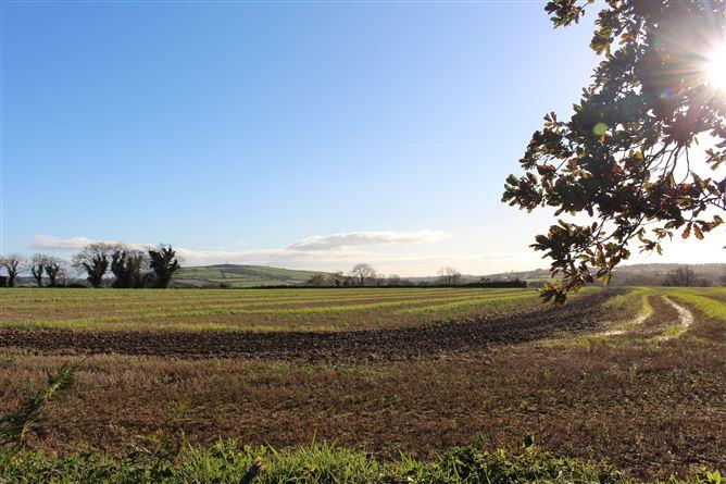 Main image for Tinnock Upper, Gorey, Wexford