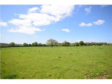 Photo of Ferns Lower, Ferns, Wexford