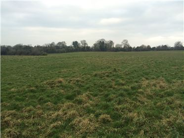 Main image of 9 ACRES - MIDDLEBOROUGH, Longwood, Meath