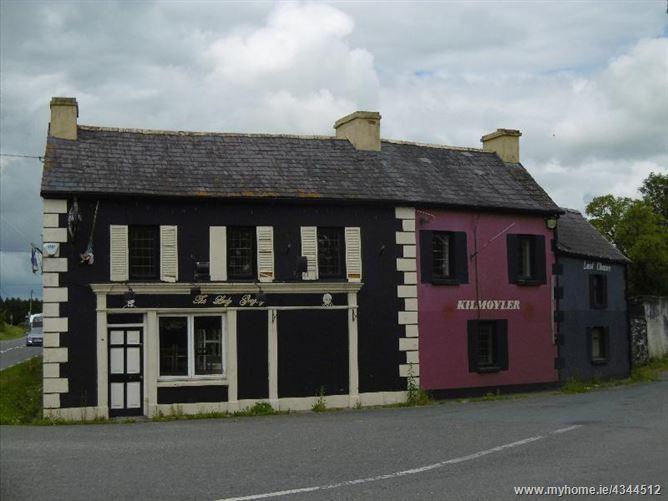 Main image for The Lady Gregory, Kilmoyler Cross, Cahir, Tipperary