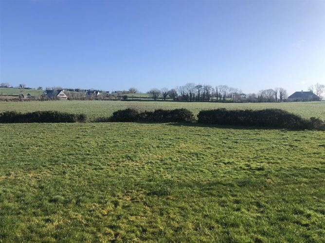 Main image for c.9.5 acres at Cattaganstown, Killenaule, Tipperary