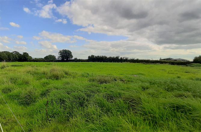 Main image for Gortnahaha, Loughmore, Templemore, Tipperary