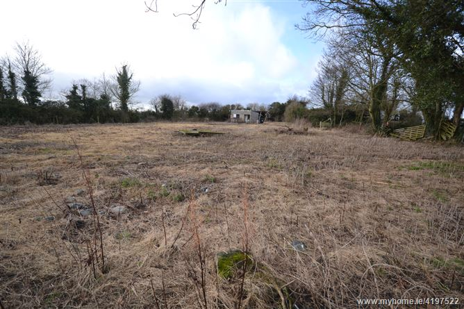 Moor of Meath, Dunboyne, Meath