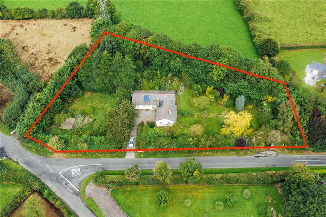 Main image for The Family Tree,Mountarmstrong,Donadea,Co. Kildare,W91 AX9E