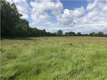 Main image of Downings North c. 4 Acres, Prosperous, Kildare