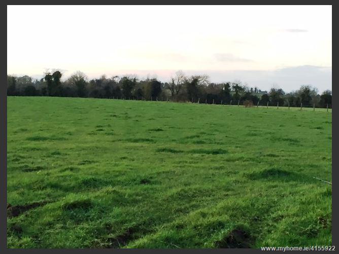 Clonlyon, Kilcock, Meath