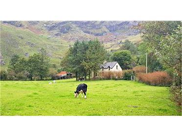 Main image for The Glens, Glengarriff, West Cork