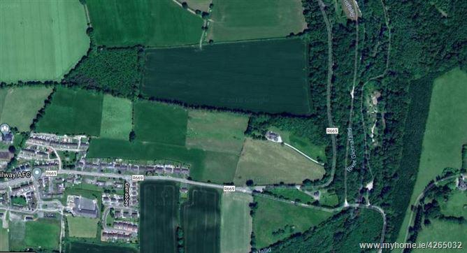 Glenshelane Wood, Cappoquin, Waterford