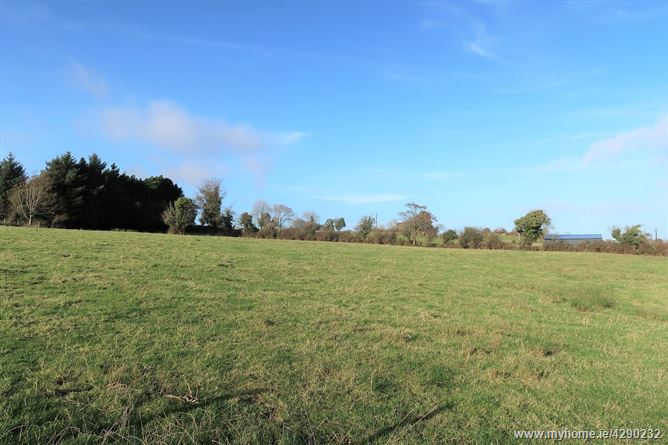 Main image for Parke Village, Castlebar, Mayo
