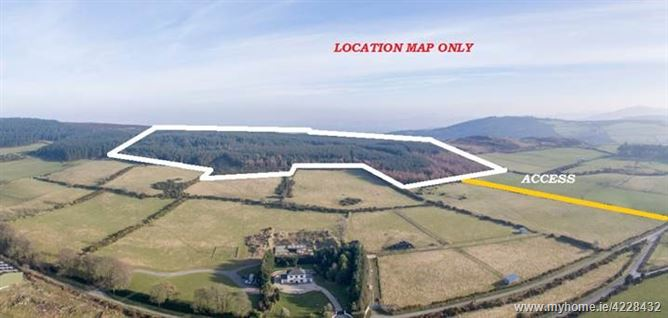 MATURE FORESTRY PLANTATION C. 82 ACRES/ 33.2 HA., CARRIGNAMUCK UPPER, Newtownmountkennedy, Wicklow