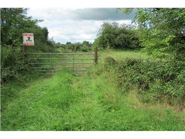 Photo of 2.8 acres at Monour, Kilross, Tipperary Town, Tipperary