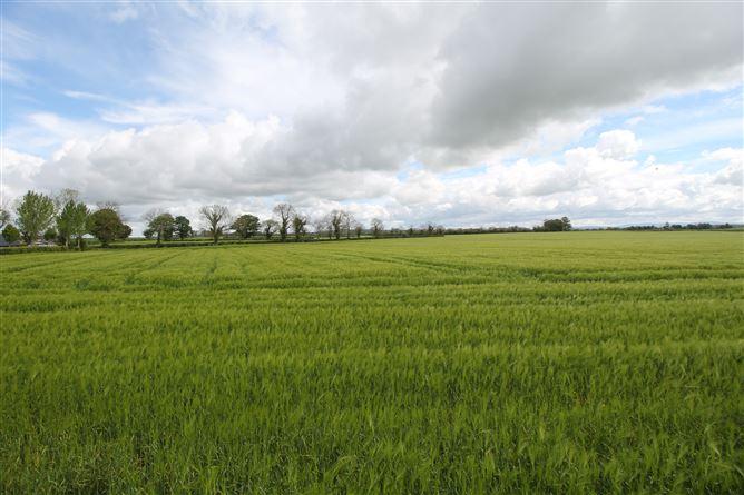Main image for Grangenolvin, Kilkea, Co Kildare