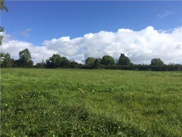 Main image of Garrowhill, Newtownforbes, Longford