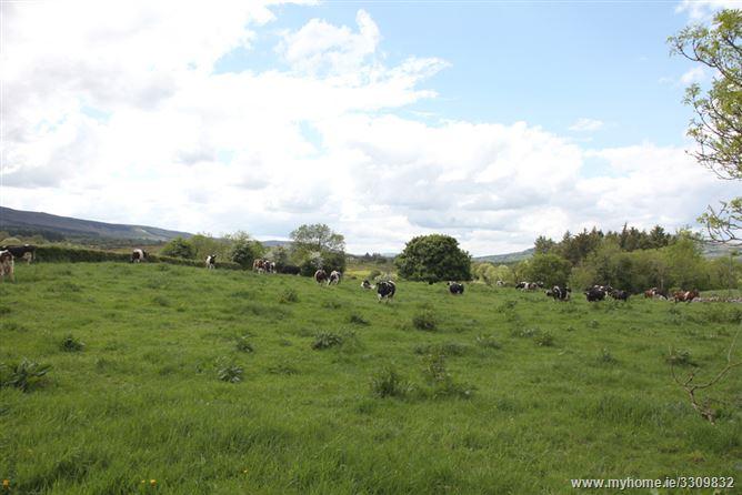 Main image for John Joe's ,Blacklion, Cavan