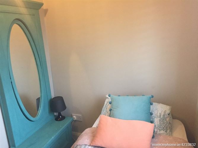 *Private single room in a fab home*, Dublin