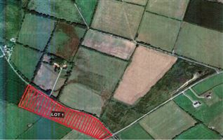 C. 10.2 Acres at Craanlusky, Bilboa, Carlow Town, Carlow