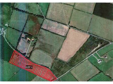 Main image of C. 10.2 Acres at Craanlusky, Bilboa, Carlow Town, Carlow