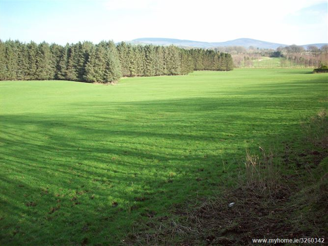 Land c. 17 acres/6.88 ha., Brittonstown, Blessington, Wicklow