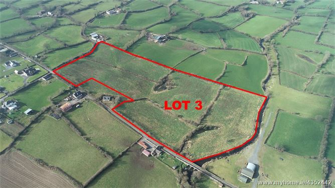 Agricultural Land Holding Lot 3, Tavnamore, Hackballscross, Co Louth, Executor Sale
