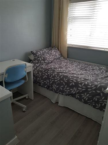 Main image for Single bedroom, Dublin