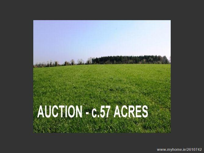 Rathangan Demense,Rathangan, Co. Kildare - approx. 22.66 hectares (57 acres)