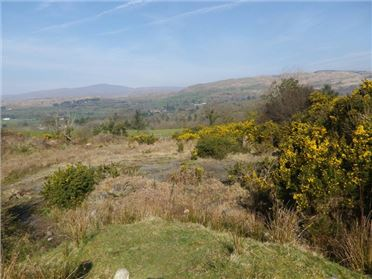 Main image of 19.5 Acres @ Kealkill, Bantry, Co. Cork, Bantry, Cork